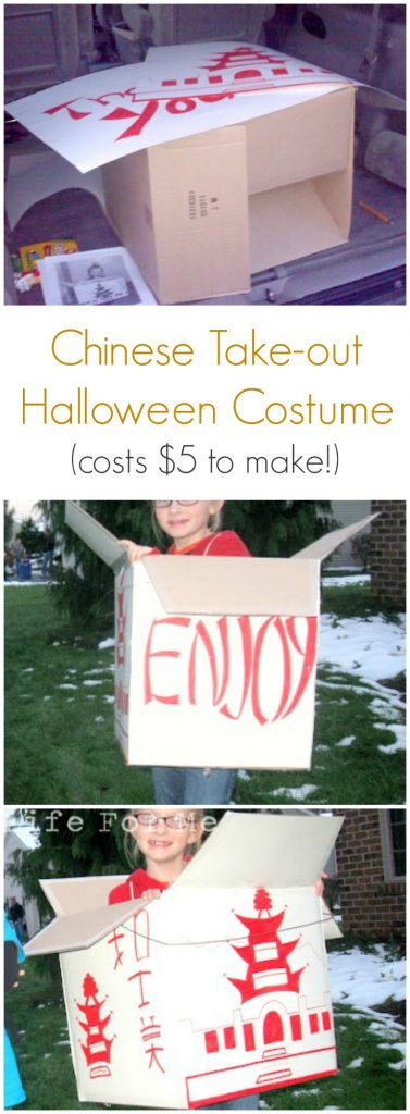 Inexpensive Chinese Takeout Homemade Halloween Costume