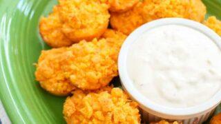 Buffalo Chicken Dip Bites Appetizer Recipe