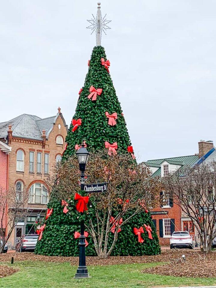 Gettysburg square Christmas tree