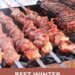 "A Pinterest pin with an image of grilled meat skewers on a BBQ grill in the winter, with snow visible in the background. The text says, ""Best Winter Grilling Tips."""